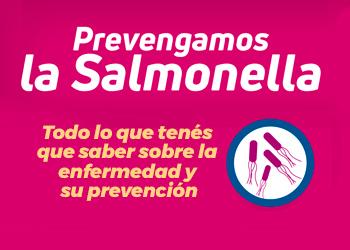 Banner-salmonella