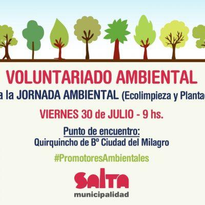 Voluntariado ambiental flyer